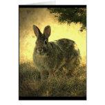 Tarjeta de felicitación salvaje de los conejos