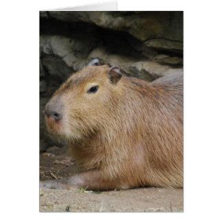 Tarjeta de felicitación salvaje del Capybara
