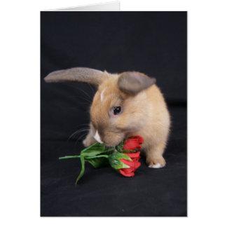 Tarjeta de felicitación subió del conejo de coneji