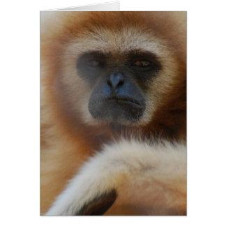 Tarjeta de felicitación triste del Gibbon