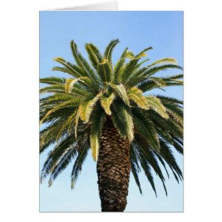 Tarjeta de felicitación tropical de la palmera ta
