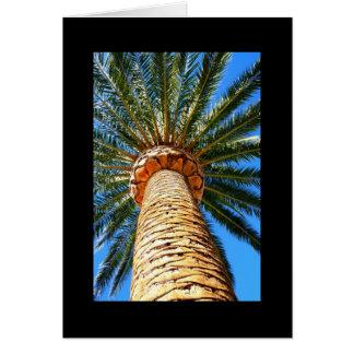 Tarjeta de felicitación tropical de la palmera y t