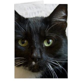 Tarjeta de felicitación vertical Lilly el gato