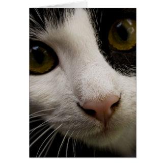 Tarjeta de felicitación vertical: Mickey el gato