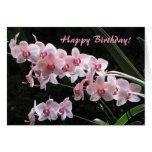 Tarjeta de felicitaciones del cumpleaños