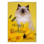 Tarjeta de felicitaciones del gatito de Ragdoll