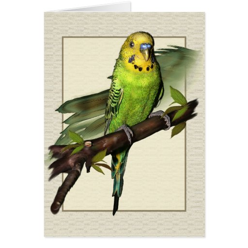 Tarjeta de felicitaciones verde del arte de Budgie