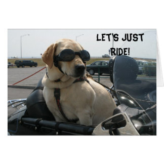 Tarjeta de Geeting para los perros del motorista d