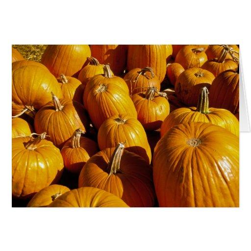 Tarjeta de Halloween del remiendo de la calabaza