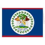 Tarjeta de la bandera de Belice