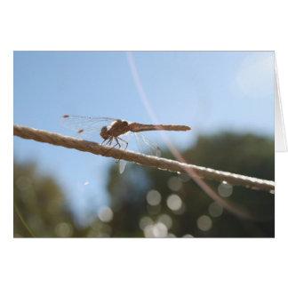 Tarjeta de la buena suerte de la libélula
