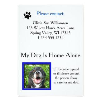"Tarjeta de la cartera del cuidado del mascota de invitación 5"" x 7"""