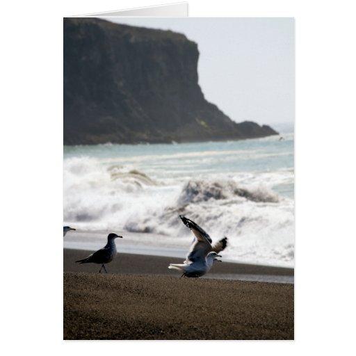 Tarjeta de la costa