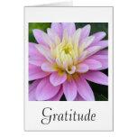 Tarjeta de la dalia de la gratitud
