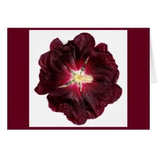 Tarjeta de la flor de Borgoña por Phantasies de