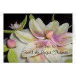 Tarjeta de la flor del azúcar de la magnolia