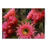 Tarjeta de la flor del cactus