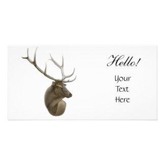 Tarjeta de la foto de los alces tarjetas personales