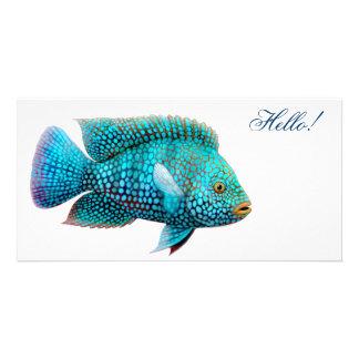 Tarjeta de la foto de los pescados de Cichlid de T Tarjeta Fotografica Personalizada
