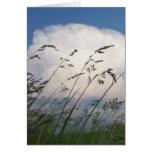 """Tarjeta de la foto de """"Rye y del cielo"""""""