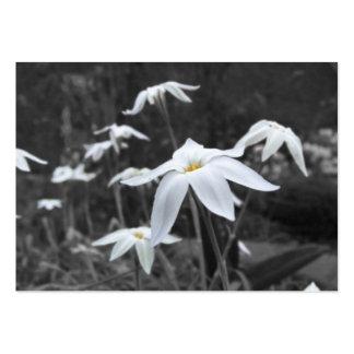 Tarjeta de la foto del ATC de Starflowers de la pr Tarjetas De Visita
