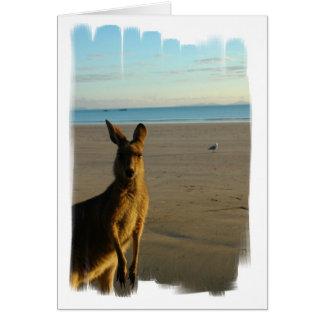 Tarjeta de la foto del canguro