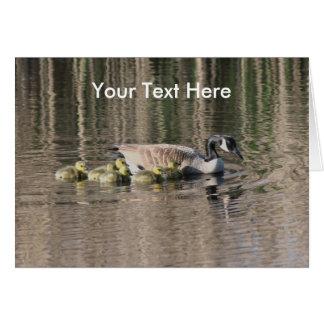 Tarjeta de la foto del ganso de Canadá y de la