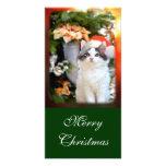 Tarjeta de la foto del gatito de las Felices Navid Tarjetas Fotográficas Personalizadas