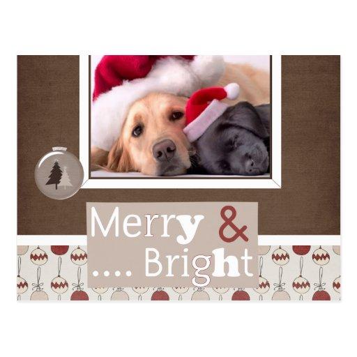 Tarjeta de la foto del navidad del mascota postal