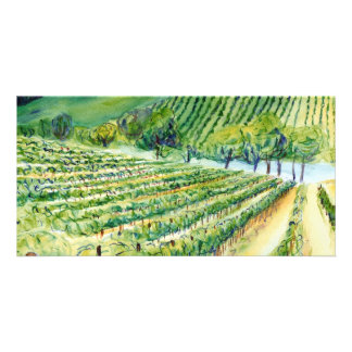 Tarjeta de la foto del viñedo de California Tarjeta Fotográfica Personalizada