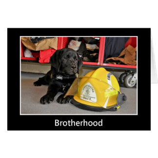 Tarjeta de la fraternidad