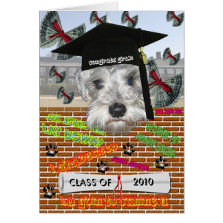 Tarjeta de la graduación del Schnauzer miniatura