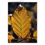 Tarjeta de la hoja del otoño