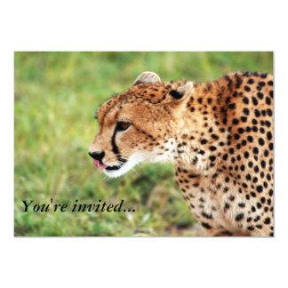 Tarjeta de la invitación del guepardo