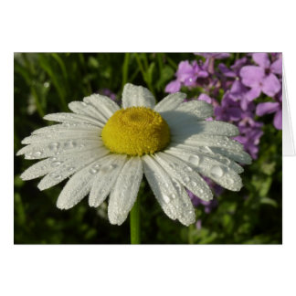 Tarjeta de la margarita y de la lila del verano