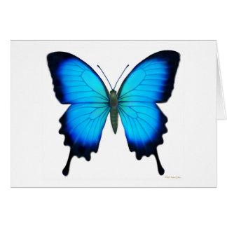 Tarjeta de la mariposa de Papilio Ulises