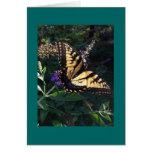 Tarjeta de la mariposa de Swallowtail