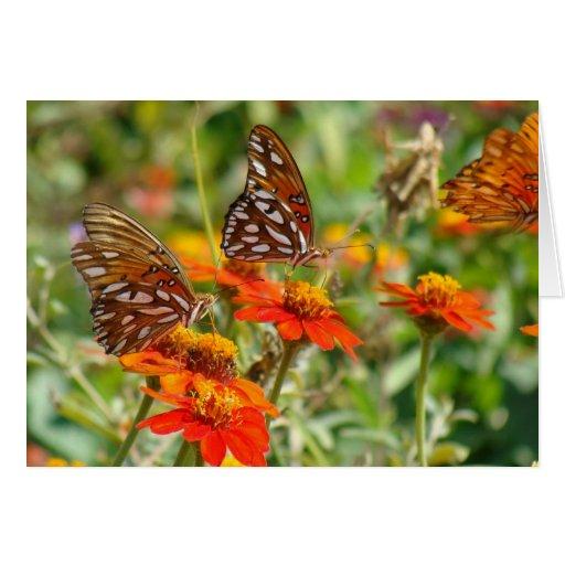 Tarjeta de la mariposa del Fritillary del golfo