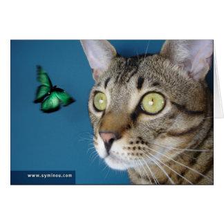 Tarjeta de la mariposa del gato de la sabana