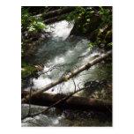 tarjeta de la naturaleza de los ríos postales