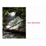 tarjeta de la naturaleza de los ríos tarjetas postales