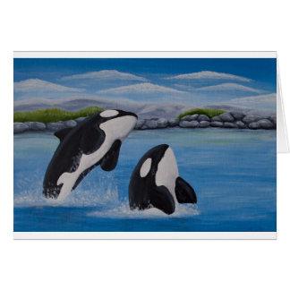 Tarjeta de la orca (orca)