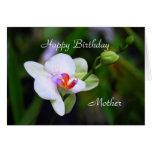 Tarjeta de la orquídea del Phalaenopsis de la
