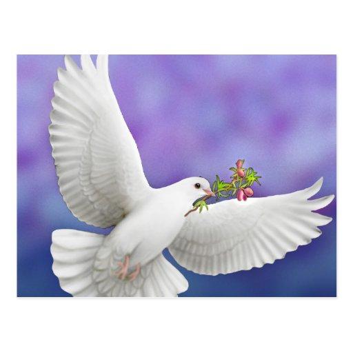 Tarjeta de la paloma de la paz del vuelo postal