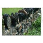 Tarjeta de la pared de piedra de Birmingham