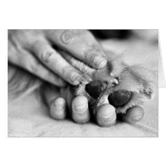 Tarjeta de la pata y de la mano