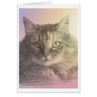 tarjeta de la pérdida del mascota del gato