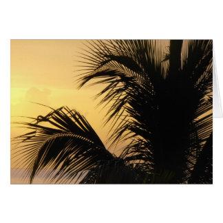 Tarjeta de la puesta del sol de la palmera