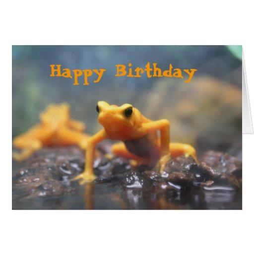 Tarjeta de la rana del dardo del veneno del feliz