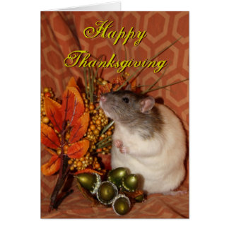 Tarjeta de la rata de la acción de gracias